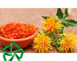 خرید و فروش عمده گیاه دارویی گلرنگ(پایار تجارت زمردین)