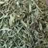 خرید و فروش عمده سبزی ترخون خشک(پایار تجارت زمردین)