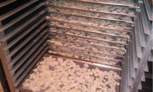 خرید فروش عمده، صادرات سیر خشک و پودر سیر(پایار تجارت زمردین)
