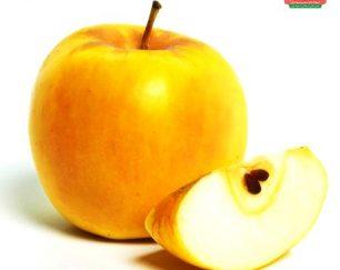 میوه باران  فروشگاه اینترنتی میوه، صیفی جات، سبزیجات تازه و بذرها